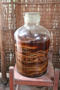 Snake wine was also made here. They let the snakes infuse the rice wine, because they believe the protein gives you strength.