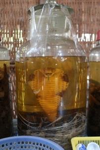 Cobra wine!!