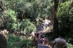 Treacherous steps to the waterfall
