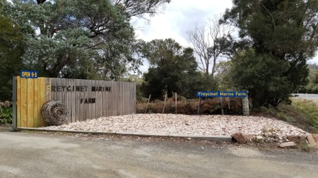 Freycinet Marine Farm - the best place for fresh seafood!