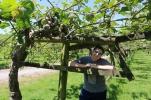 We made John take a senior portrait in the kiwi orchard.