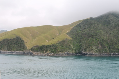 View from the Interislander car ferry.