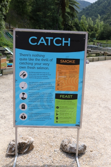 Instructions on how to catch a fish. John didn't need them, but I read them carefully!